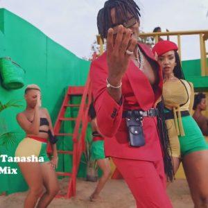 Gere – Tanasha Donna & Diamond Platinumz Extended HD